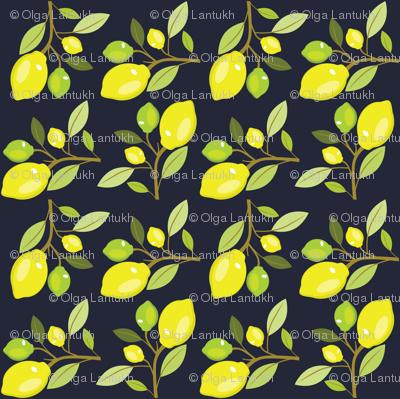 Grey-yellow-lemon-pattern_preview