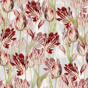 Dutch Tulips on white