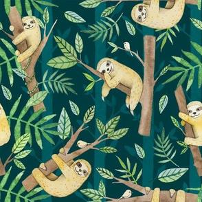 Chillin Sloths