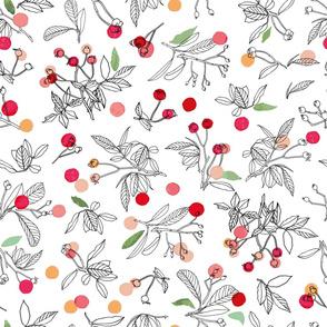 white_red_dot_winter_berries_seaml_stock