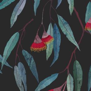 Eucalyptus leaves and flowers on dark grey