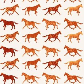 Run Horse, Run