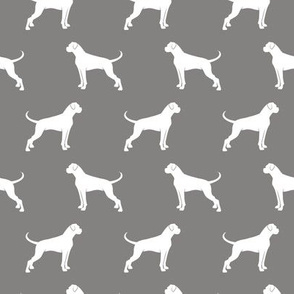 Boxer Dogs on grey
