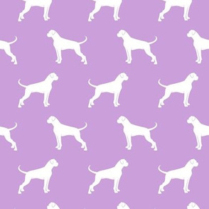 Boxer Dogs on purple