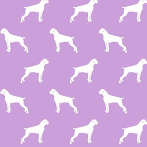 boxer dogs on purple - docked tails