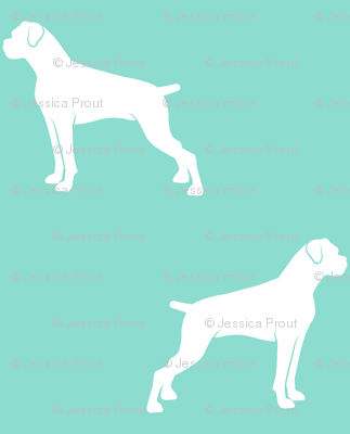 boxer dogs on teal - docked tails