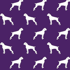 boxer dogs on dark purple  - docked tails