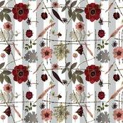 Red-anemone-stripe_shop_thumb