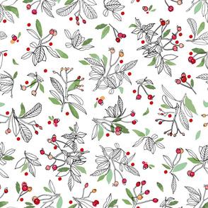 white_red_dot_winter_berries_02_seaml_stock
