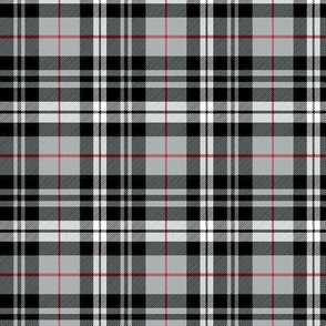 (small scale) fall plaid || red stripe C18BS