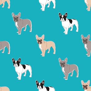 Three Frenchies (Teal)
