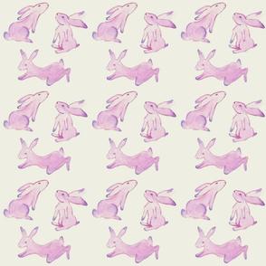 Painted Bunnies
