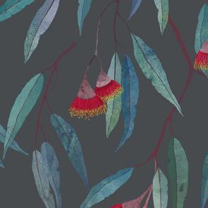 Eucalyptus leaves and flowers on raccoon grey