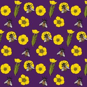 Buttercup repeat purple