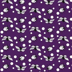Ladybird polka dot purple