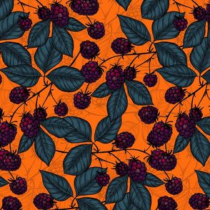 Blackberry hand  drawn pattern