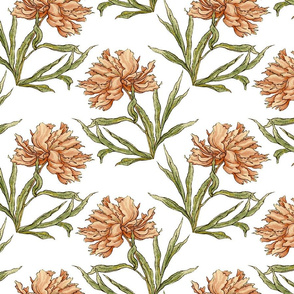 Vintage Peony in Peach
