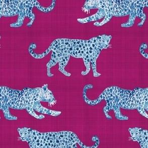 Leopard Parade Blue on Magenta