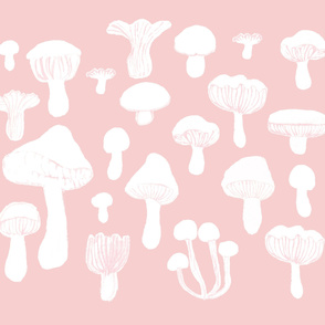 mashrooms pink