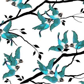 Lovebirds - Love in the Air | Teal-White-Black