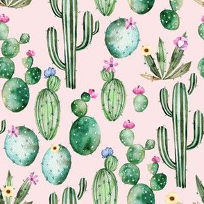 "6"" Tropical Hand drawn Cacti on Blush Pink"