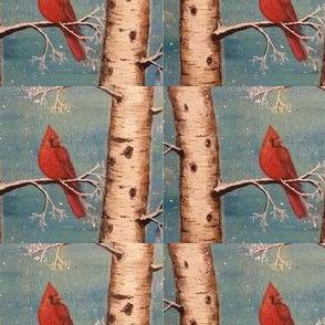 Cardinal in Birch