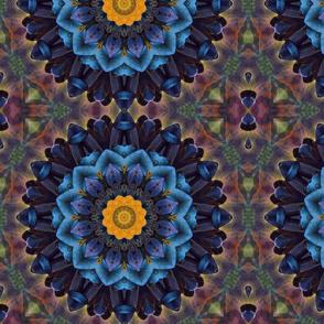 Lil Roo kaleidoscope