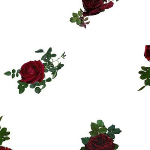 Rose Pokerdot ON WHITE