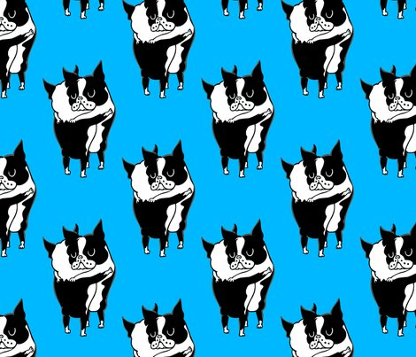 Boston-terrier-hugs_8x8_shop_preview