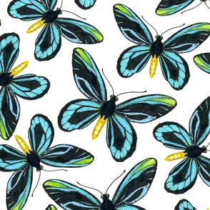Birdwing butterfly pattern 2