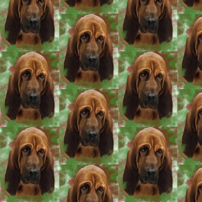 bloodhound portrait for fabric
