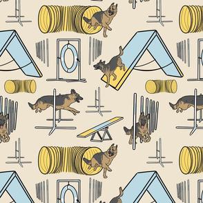 Simple German Shepherd agility dogs - tan