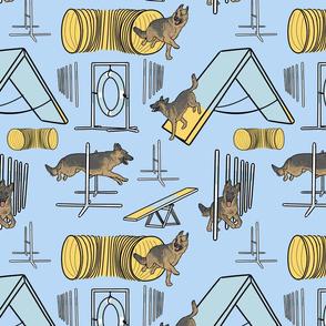 Simple sable German Shepherd agility dogs - blue
