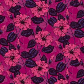 Hibiscus night
