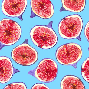 Fig slices watercolor pattern