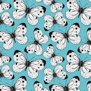 Cabbage butterfly pattern