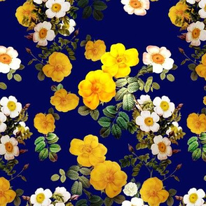 Yellow rose, Redoute rose / navy, yellow and white floral