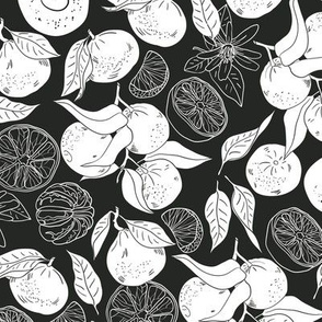 Tangerins Black and White