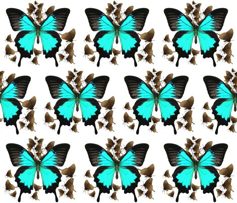 Rrulysses-butterfly4-material-design_shop_preview