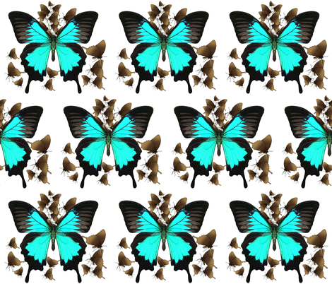 Ulysses Butterfly4 - material design fabric by designs_by_joan_(paintingsbyjoan) on Spoonflower - custom fabric