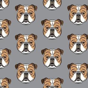 Bulldogs -  Grey - English Bulldog Dog Breed