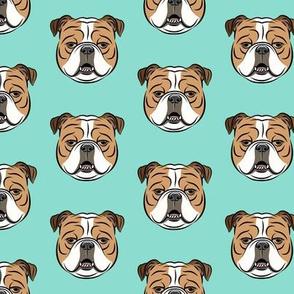 Bulldogs - Teal -British bulldog English Bulldog Dog Breed