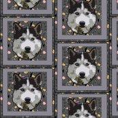 Rsiberian-husky-fabric_shop_thumb
