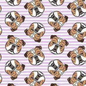 Bulldogs - Toss on Purple Stripes -British bulldog English Bulldog Dog Breed
