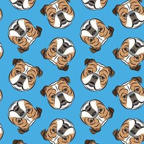 Bulldogs - Toss on Blue - British bulldog English Bulldog Dog Breed