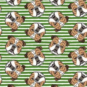 Bulldogs - Toss on Green Stripes - British bulldog English Bulldog Dog Breed