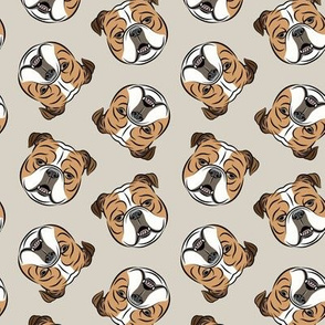 Bulldogs - Toss on Beige - British bulldog English Bulldog Dog Breed