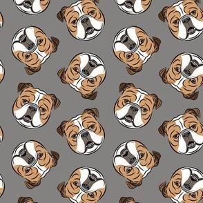 Bulldogs - Toss on Grey -British bulldog English Bulldog Dog Breed