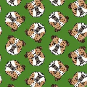 Bulldogs - Toss on Green - British bulldog English Bulldog Dog Breed
