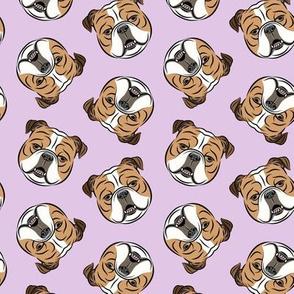 Bulldogs - Toss on Purple - British bulldog English Bulldog Dog Breed